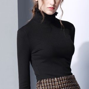 Black long sleeves tightly high neck blouse